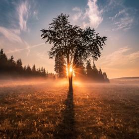 Krušnohorský východ Sluníčka