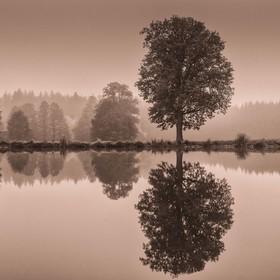 Podzimní zrdcadlení