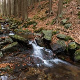 Cestou k Vysokému vodopádu