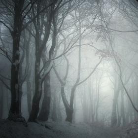 Království sněhu a ledu