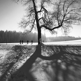 velký stín