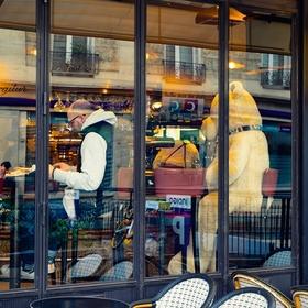 Ranní káva s medvědem, Paříž