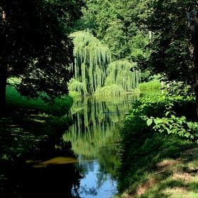 Park Vetrusy