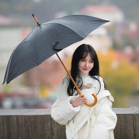 Pražská deštníková pohoda  č. 1