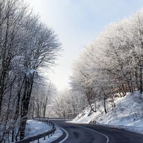 Zimnou cestičkou