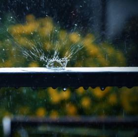 Korunka deště