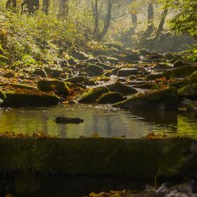 Podzimní rano na Mohelnici