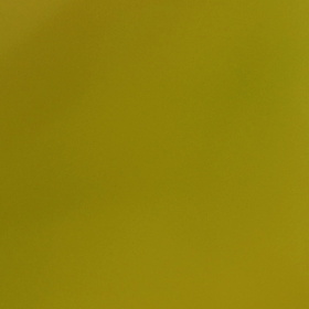 Kobylka na stéblu trávy