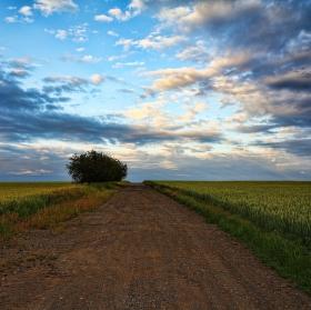 Cesta za horizont