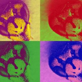 Inspirace Andym Warholou