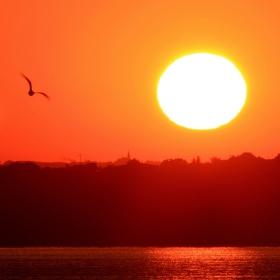 Na křídlech slunce