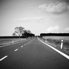 Cesta domů
