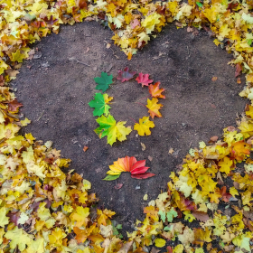 Milovaný podzim
