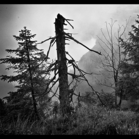 Mlha na Jezerní hoře