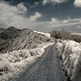 Cesta Vl