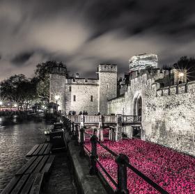 Večerní Tower of London