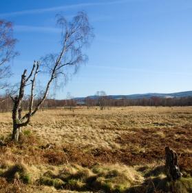 zima ve skotsku