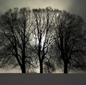 Zimou zakletí