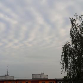 Vlnové mraky