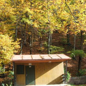 Podzimní lesík s chatkou