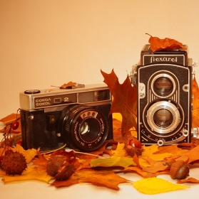 Dědo, jdeme fotit podzim?