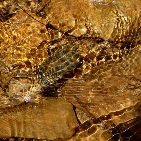 Hadí voda