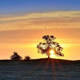 Vycházející slunce svítící do rosy v trávě