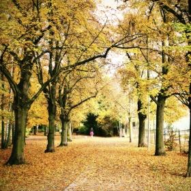 Cesta podzimu