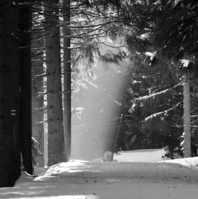 Hra stínů