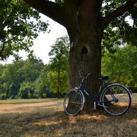 Zapomenuté kolo
