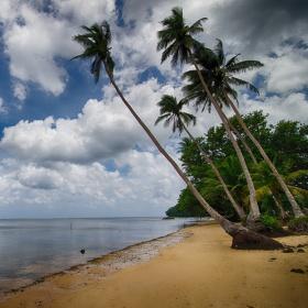 Palau Relax