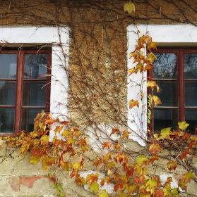 2 podzimy