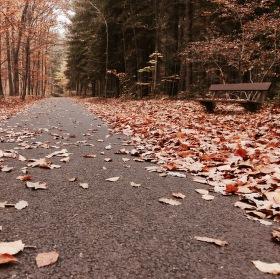 Odpočinek na cestě