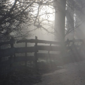 Tajuplná vánoční mlha