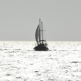 Plavba