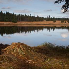 Mrtvý rybník 1 - podzim