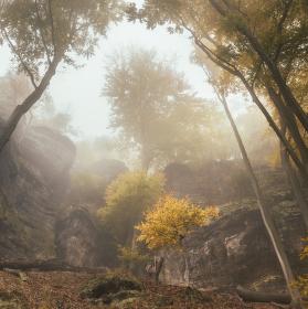 Zlatá podzim