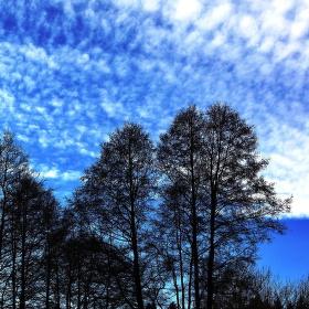Modrá neděle