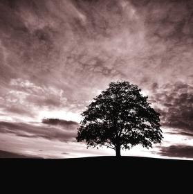 ticho před bouří