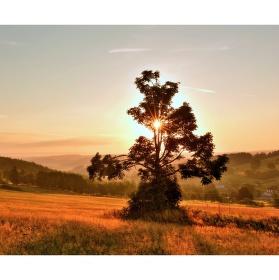 Malebné ráno nad Roženeckými pasekami