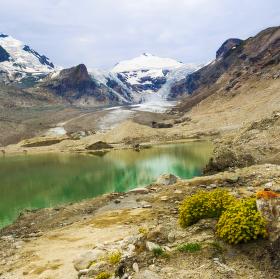 Ledovec Pasterzenkees