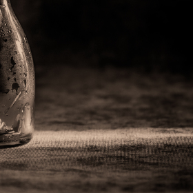 jedovatý ocún černobíle