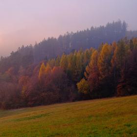 Podzimní mlhy ve Vizovických kopcích...