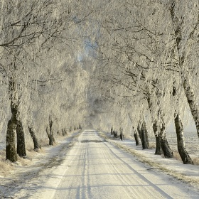 Průjezd zimní bránou
