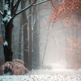 ...když zima přichází