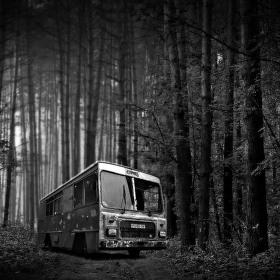 Lesní expres