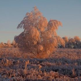 Ledová krása při východu slunce...