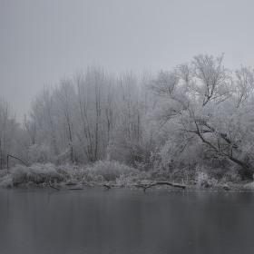 Na řece Dyji