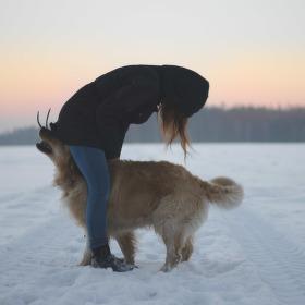 Tereza z tanku a pes
