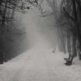 Zimní nálada